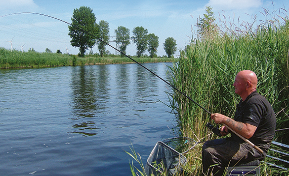 Canals in Holland are very scenic and full of coarse fish/