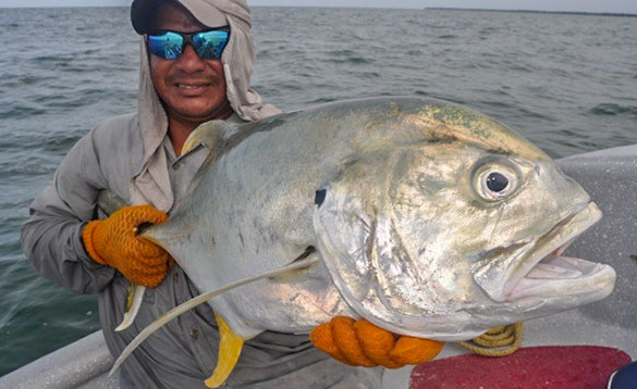 Angler holding a Jack Crevalle caught in Nicaragua/