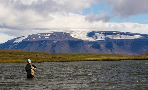 Angler fly fishing in Iceland/
