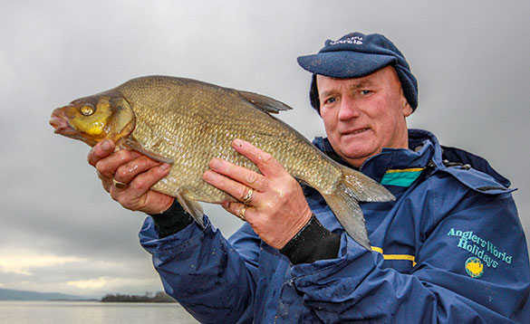 Quality bream caught fishing on the feeder/