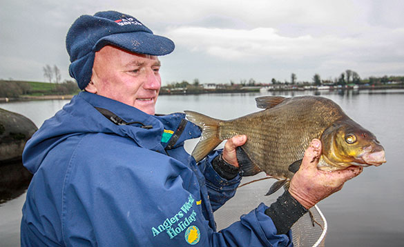 angler holds a nice Irish Bream/