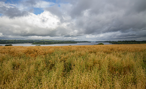 View across countryside to lakes in Co Cavan, Ireland/