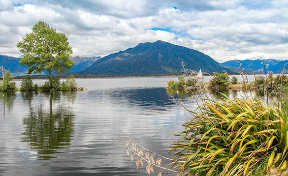 Most South Island lakes contain wild trout/