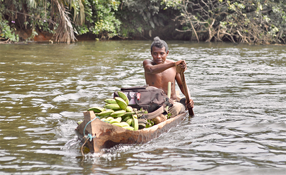 Man paddling a canoe filled with bananas in Nicaragua/