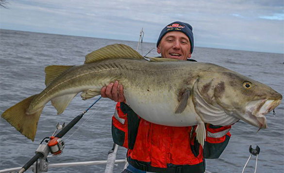 angler holding a big cod fish /