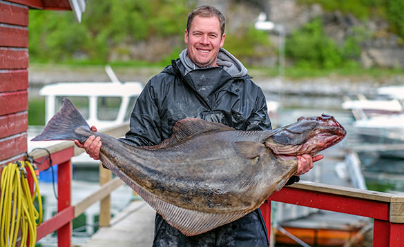 Angler standing on a jetty holding a big halibut/