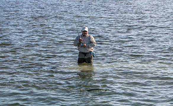 Angler standing fishing in the sea around the Cayman Islands/