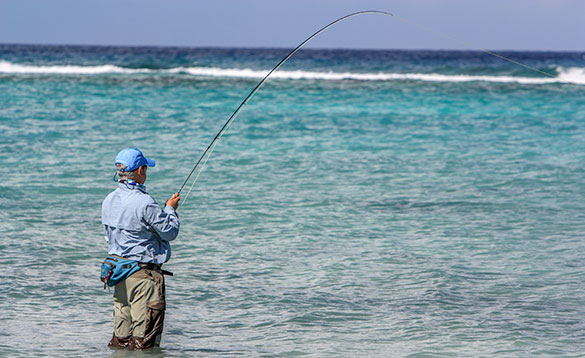 Anglers standing fishing in the sea around the Cayman Islands./
