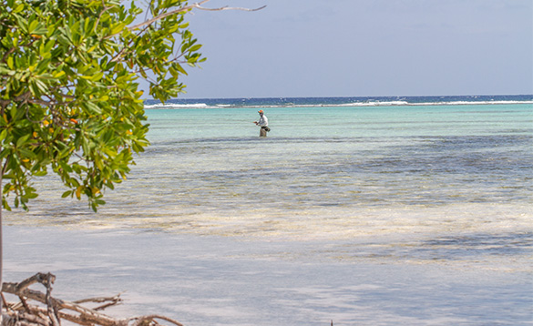 Angler stood fishing in the waters around the Cayman Islands/