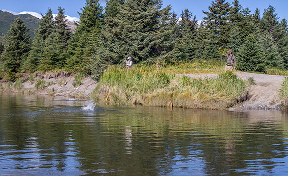 Two anglers on a riverbank both reeling in fish that are splashing in the water/