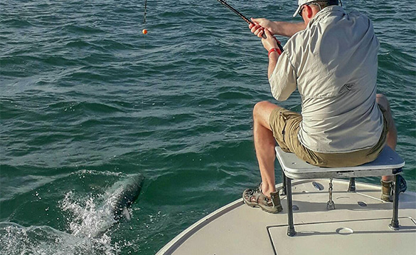 Angler fishing for tarpon in Florida/